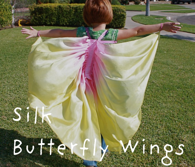 homemade butterfly wings